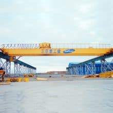 WEIHUA Double Girder Overhead Crane with Electric Hoist