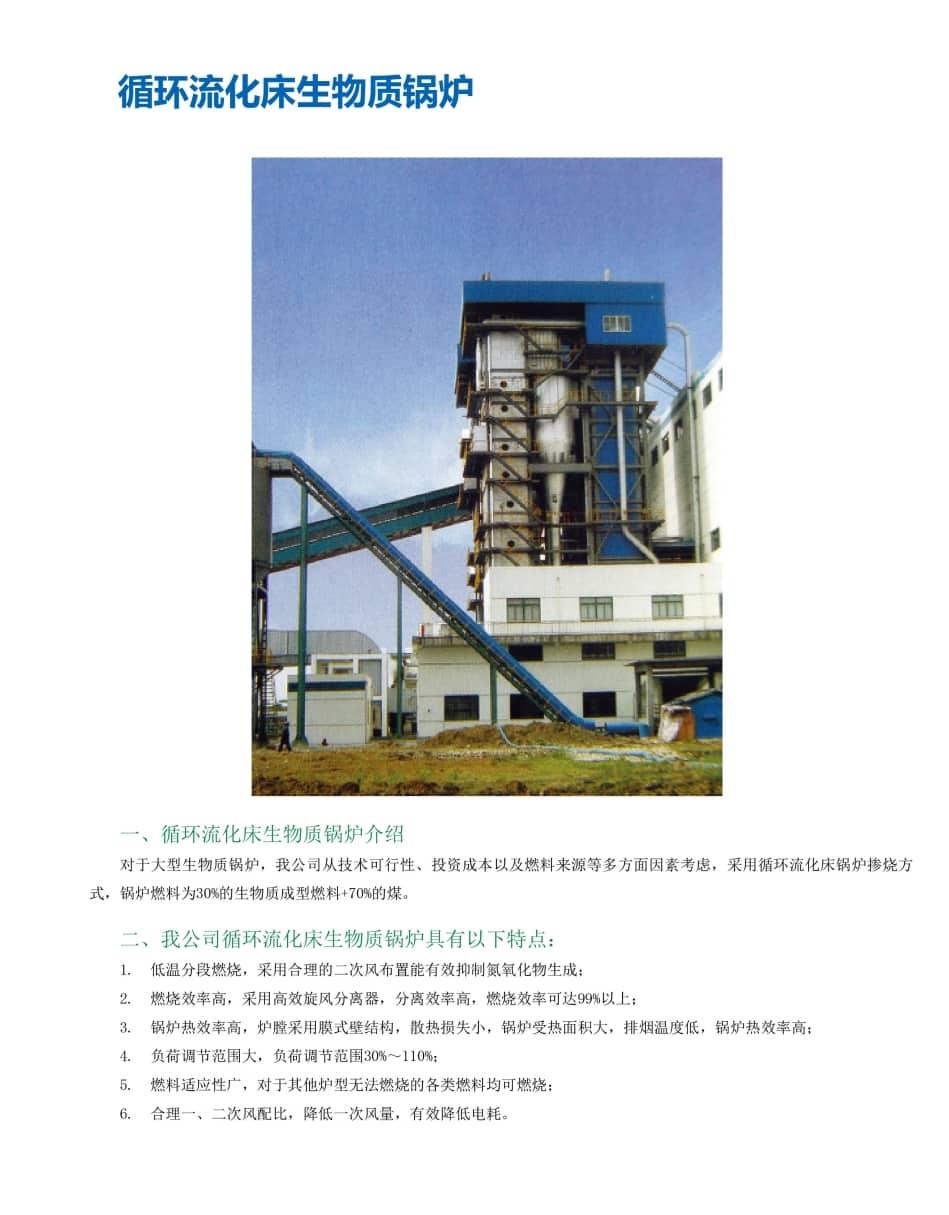CFB Serial Biomass Boilers