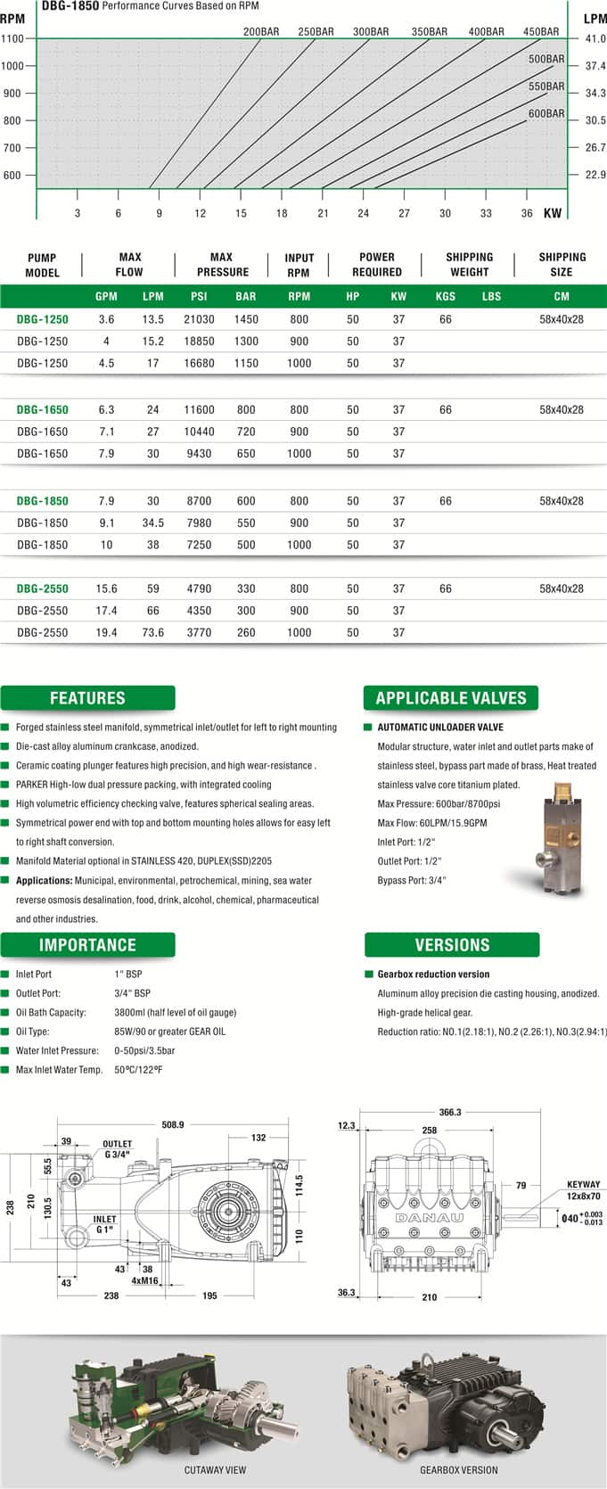 DBG Series Ultra-High Pressure Plunger Pump